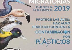 ¿Conoces la razón? Hoy se celebra el Día Mundial de las Aves Migratorias