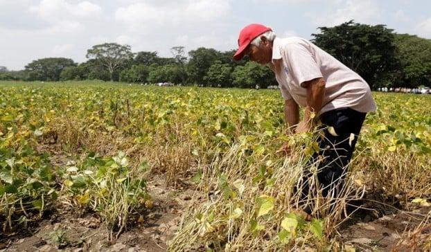 Minagriculturá pidió refinanciamiento de créditos para campesinos de Córdoba