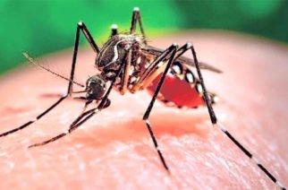 Córdoba entre los 10 departamentos con más reportes de casos de dengue
