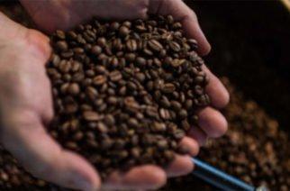 Duque sancionó Ley que crea el Fondo de Estabilización de los Precios del Café