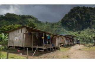 En Risaralda asesinaron a puñaladas a niña indígena