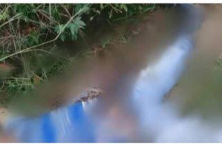 Accidente de tránsito dejó un muerto y tres heridos en Tierralta