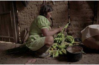 Ancianos mueren por desnutrición en la región Amazónica
