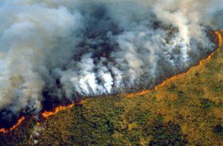 El Amazonas se quema desde hace dos semanas: Hay pánico en Brasil