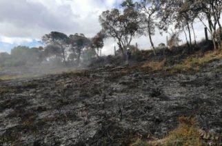 Incendios forestales también han afectado más de 3 mil hectáreas de Cundinamarca