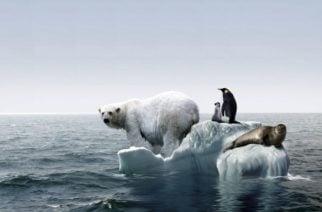 Se acelera el calentamiento global