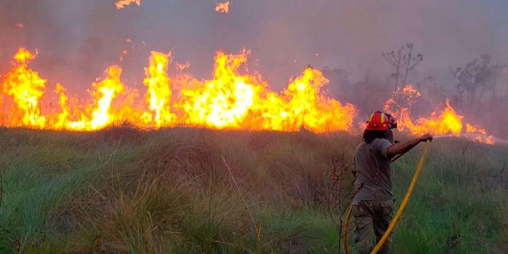 Paraguay declarada en emergencia ambiental por incendios forestales