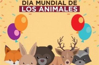 4 de octubre, Día de los Animales