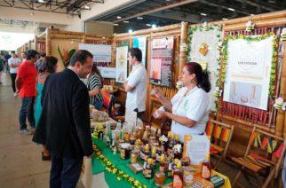 Unión Europea y MinAmbiente anuncian desembolso de cinco millones de euros para programa de negocios verdes en Colombia