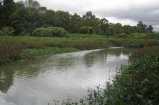 CVS busca que se declaren como zonas protegidas 39 mil hectáreas del departamento