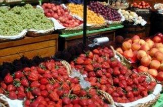 Colombia cierra el año con incautaciones de contrabando de productos agropecuarios valorados en $10.200 millones