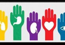Día Mundial del Trasplante